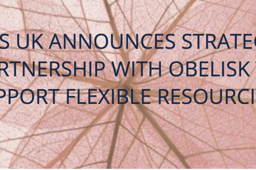 Obelisk Collaborates with CMS on New Flexible Service Offer
