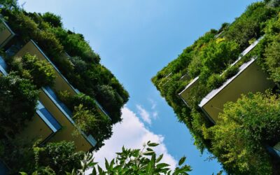 Why sustainability is at the forefront of the legal industry