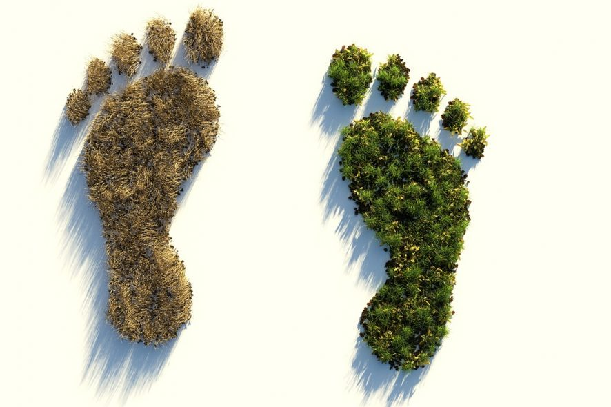 The Legal Industry Carbon Footprint – How Lawyers Can Work More Sustainably