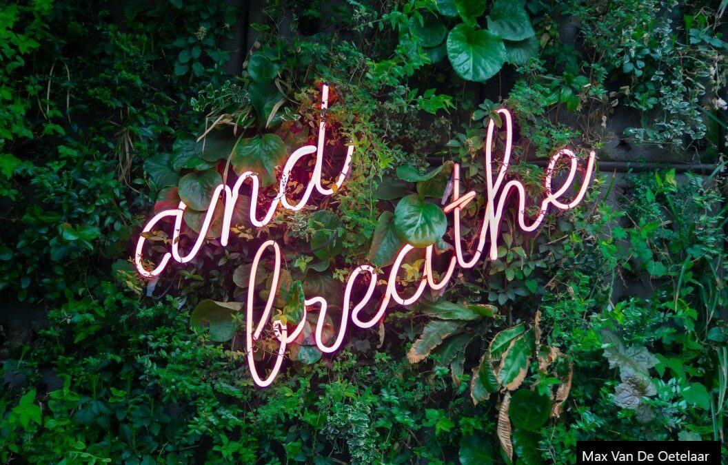 And breathe tips for your staycation